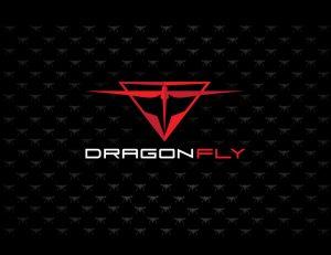 DragonFly-branding-P2-2